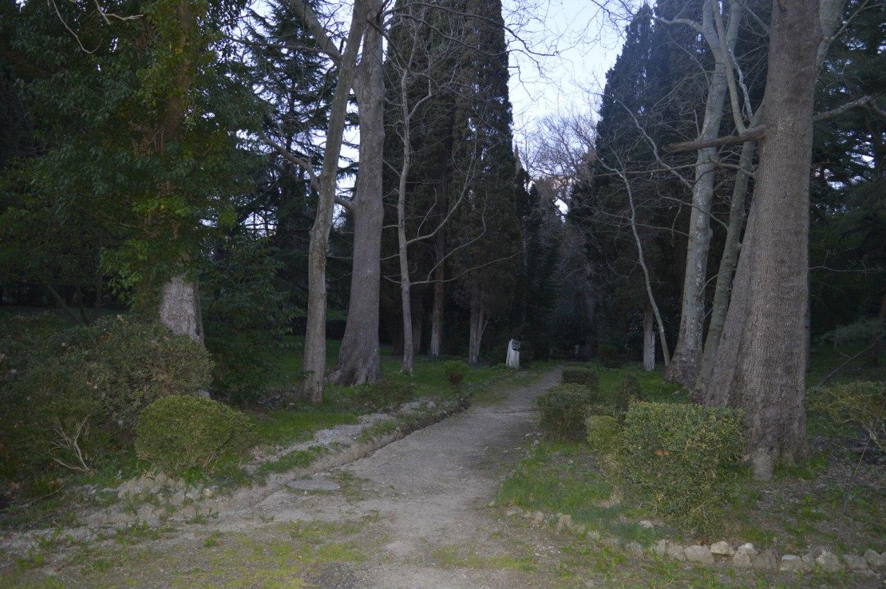 Парк Гарвиса-Виннера, Артек