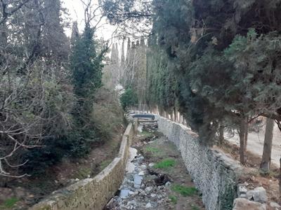 Река Черкес-Дере в Артеке, Кипарисный