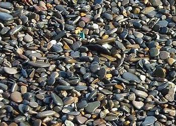 Артековский пляж, Кипарисный