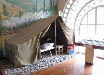 Артековский музей Истории Лагеря