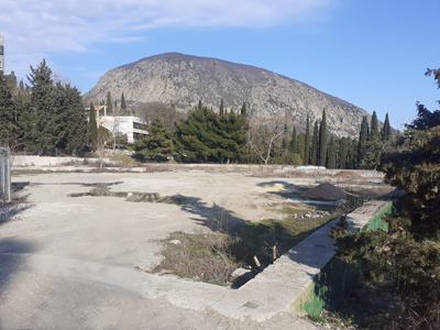 Артек, место столовой Грибы