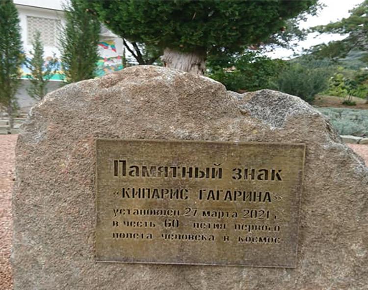 Артек, Гагаринский кипарис